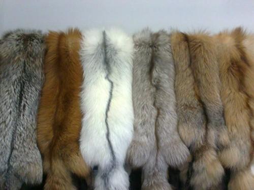 Натуральный мех песца, чернобурки, лисицы, пушнина