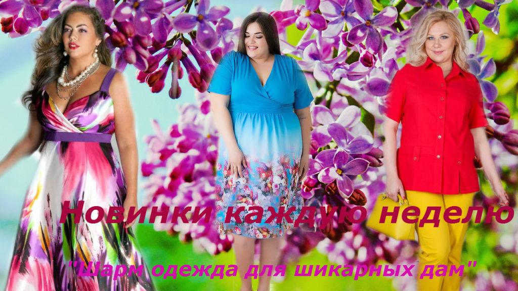 42542efcb37a Где купить недорого женскую одежду большого размера